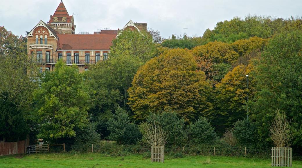 Richmond-upon-Thames featuring a garden