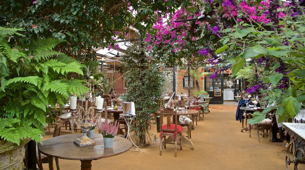 Richmond-upon-Thames featuring wild flowers and café scenes