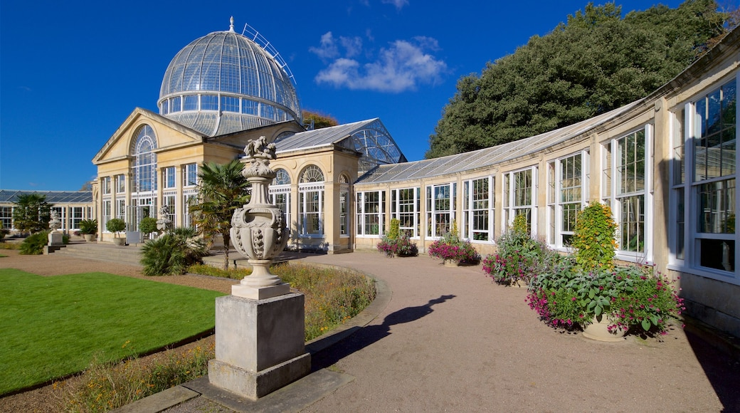 Syon Park which includes a garden and wild flowers