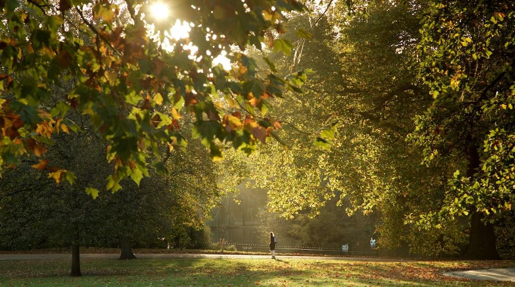 Parque de St. James ofreciendo un jardín y una puesta de sol