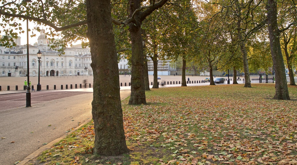 Parque de St. James mostrando un parque y hojas de otoño