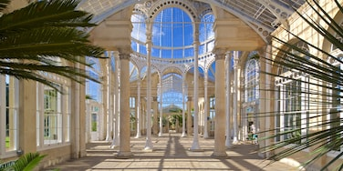 Syon Park featuring heritage elements and interior views