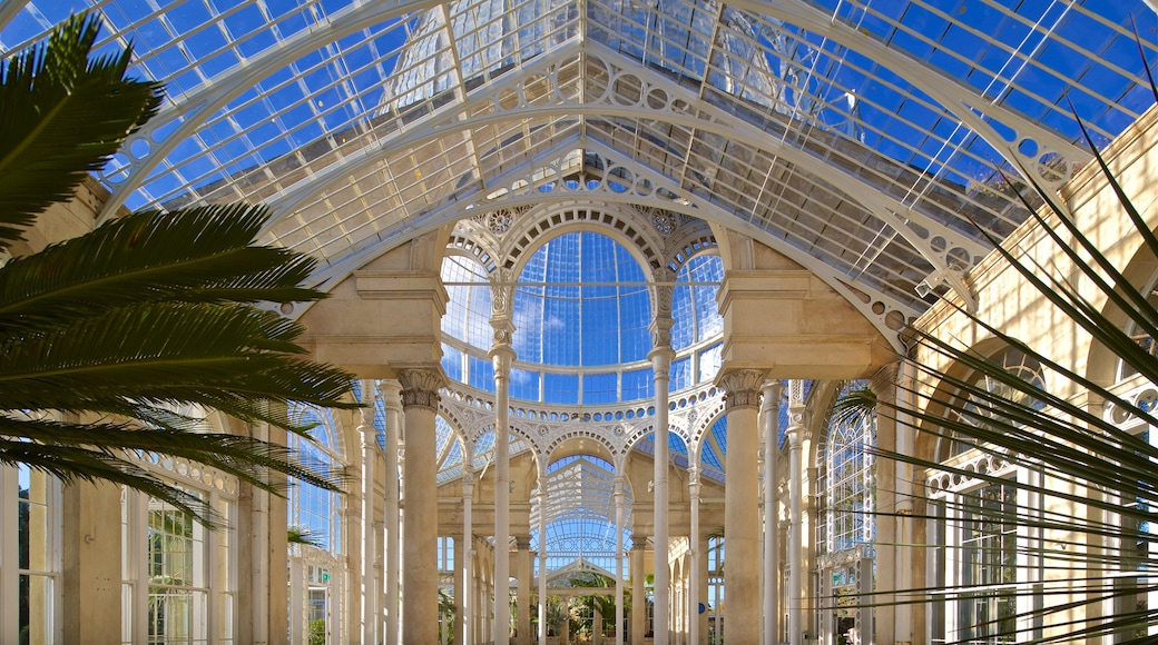 Syon Park showing heritage elements and interior views