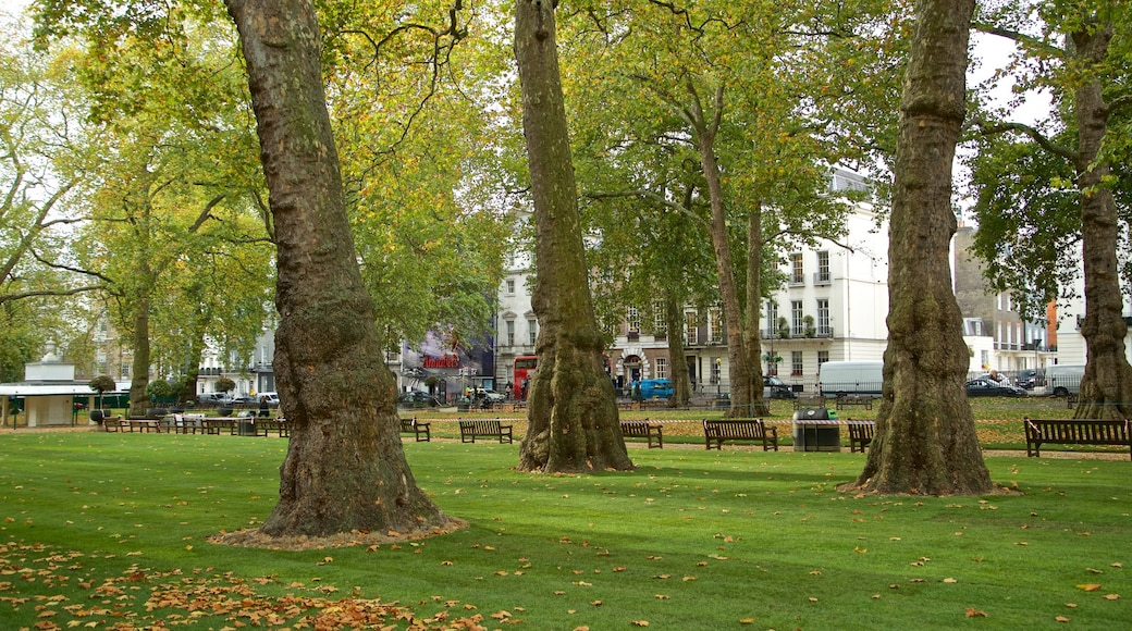 Berkeley Square showing a garden and autumn leaves