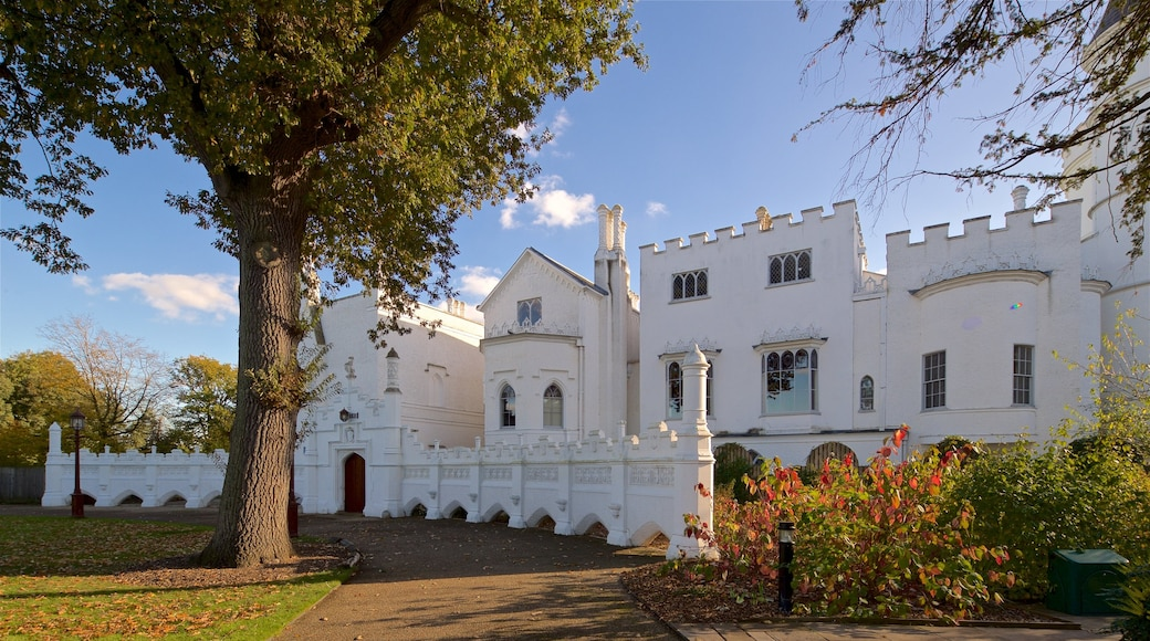 Strawberry Hill showing heritage architecture and a castle