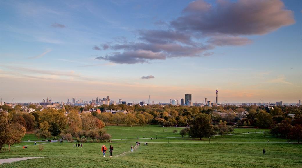 Primrose Hill som inkluderar landskap, en solnedgång och en stad