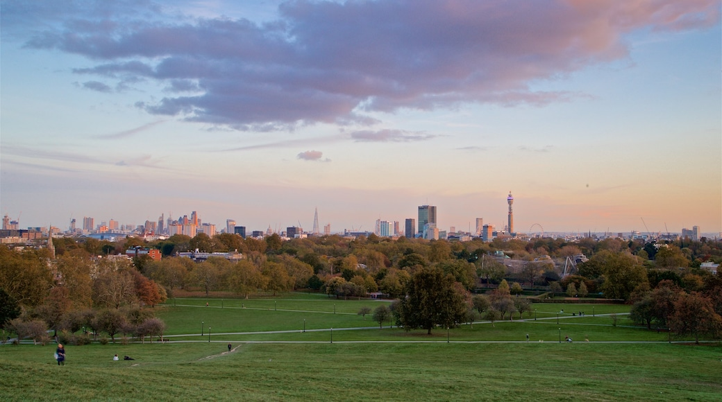 Primrose Hill which includes a park, landscape views and a sunset