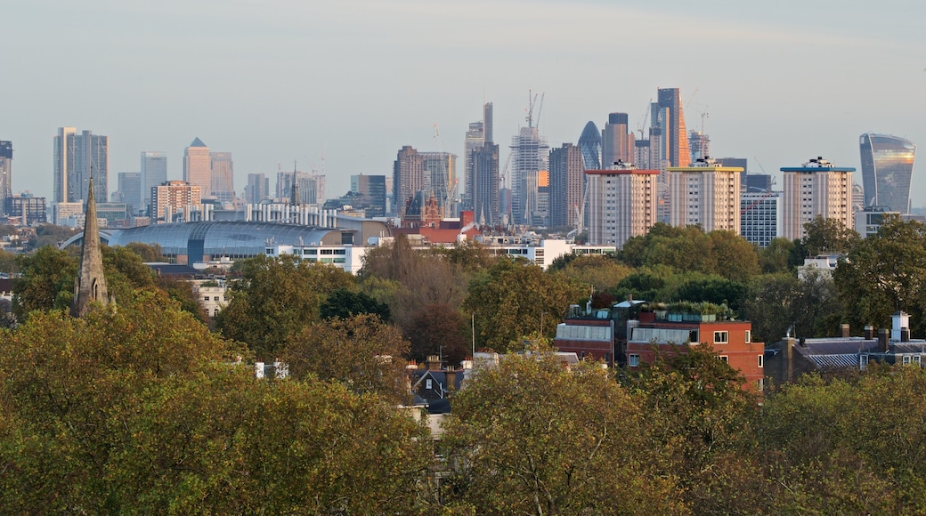 Primrose Hill showing a city, landscape views and skyline