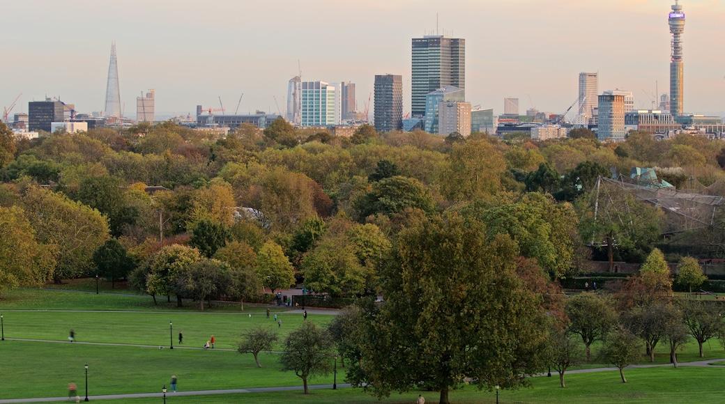 Primrose Hill presenterar skyline, landskap och en trädgård