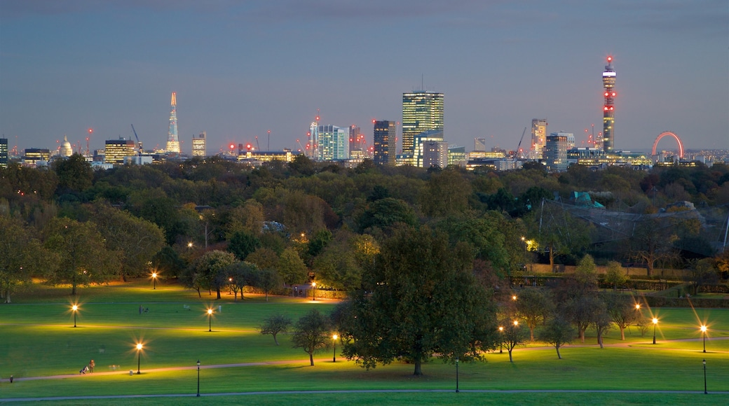 Primrose Hill which includes a park, night scenes and skyline