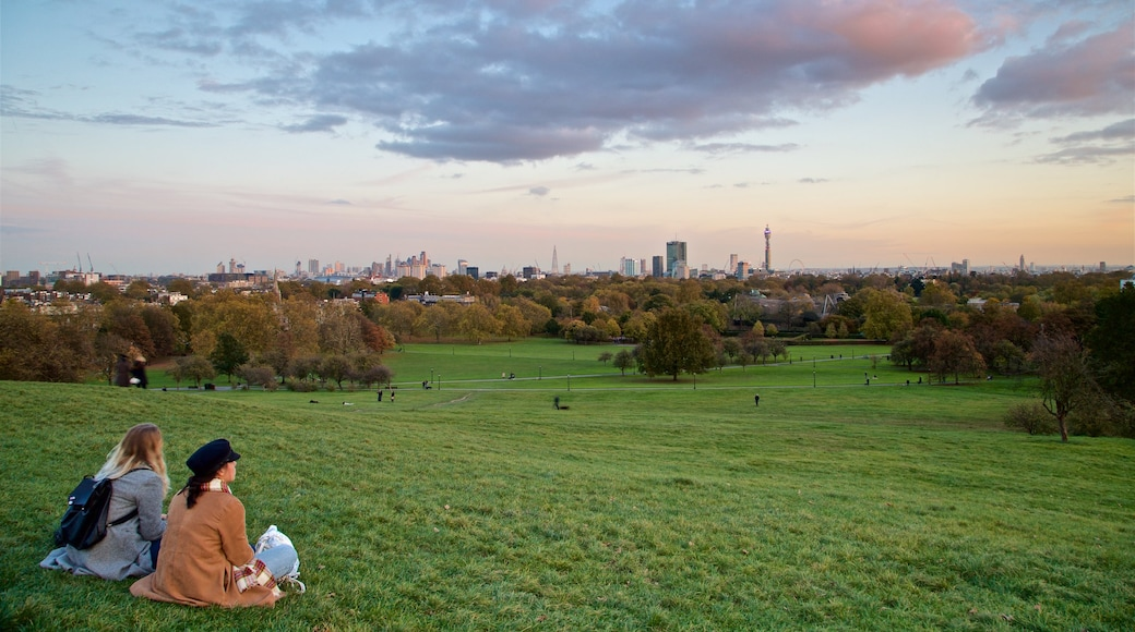 Primrose Hill which includes landscape views, a park and a sunset
