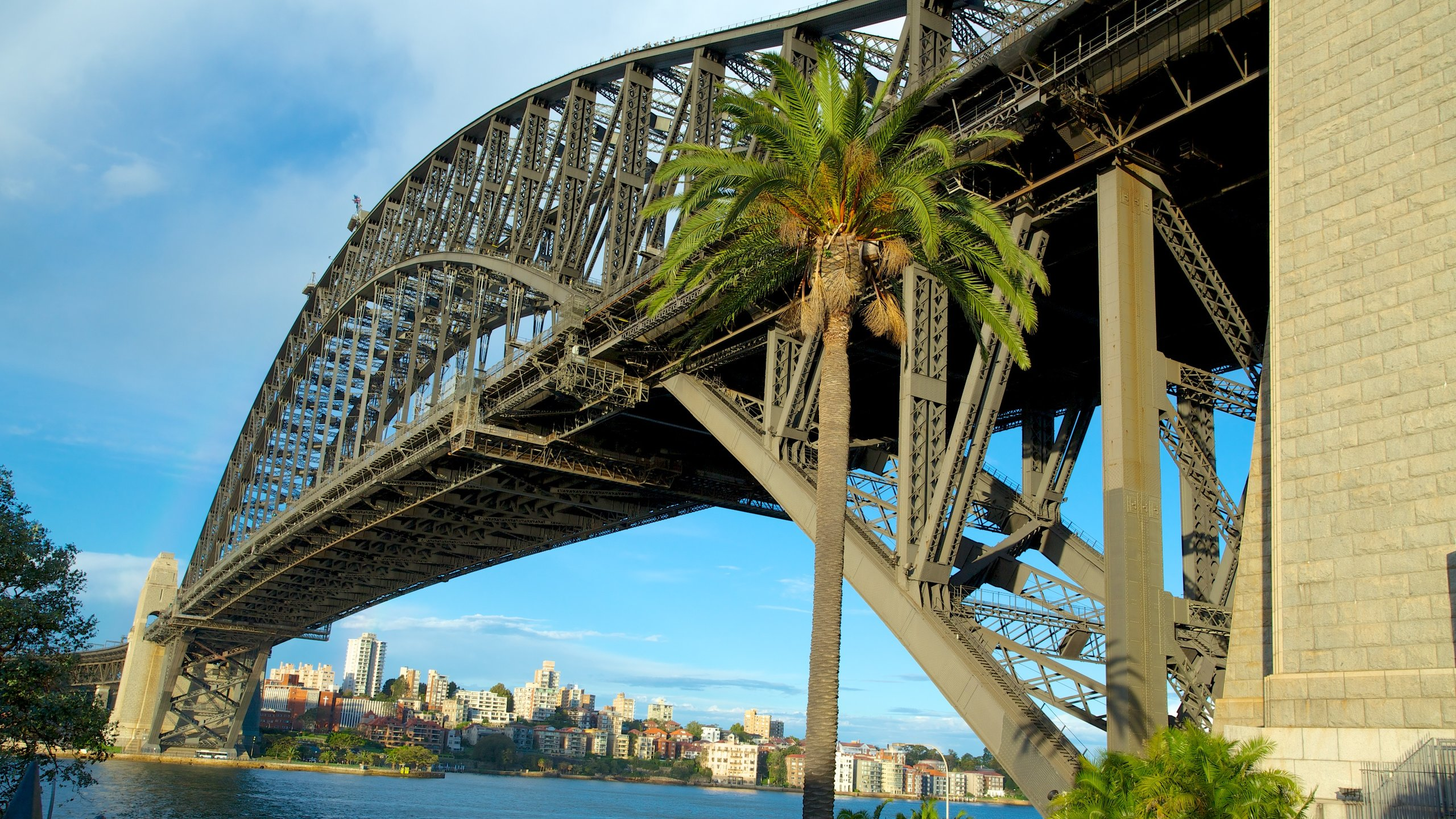 31147-Sydney-Harbour-Bridge.jpg (2560Ã?1440)