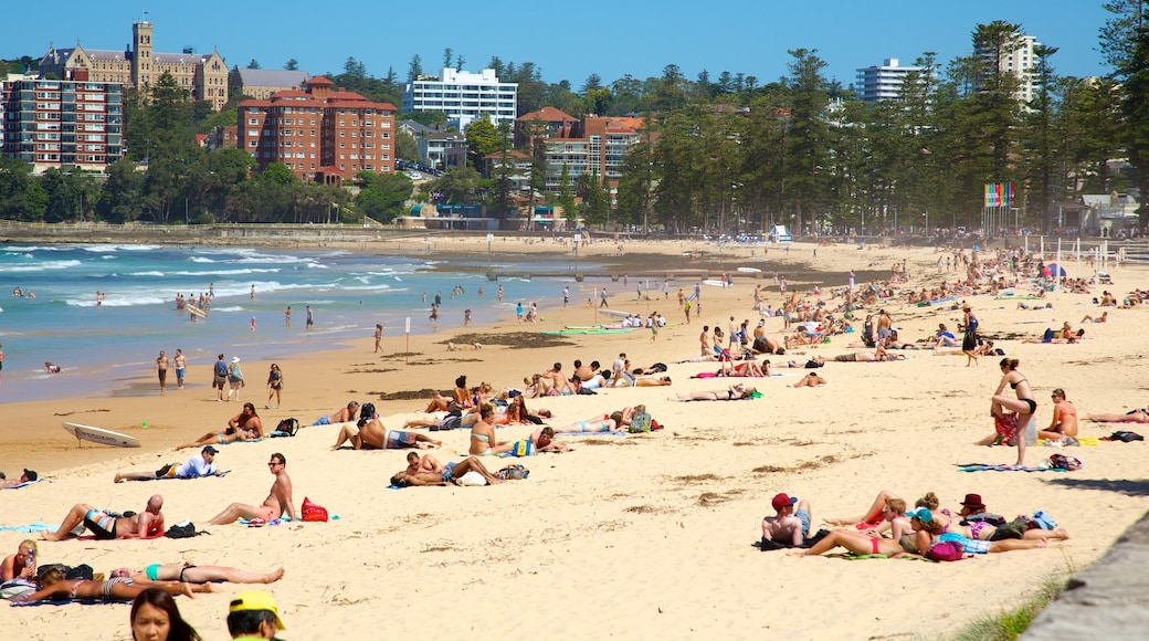 Manly Beach which includes swimming, tropical scenes and a coastal town