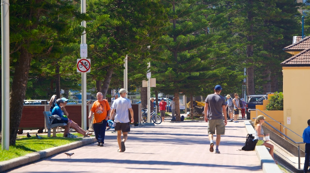 Manly Beach which includes a city and street scenes as well as a small group of people