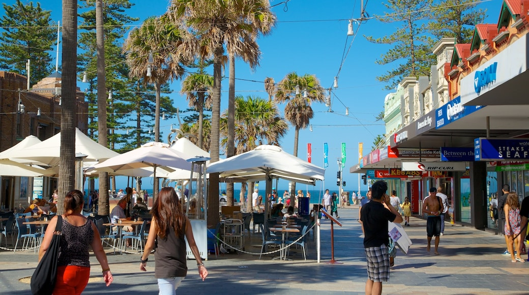 Manly Beach showing tropical scenes, outdoor eating and street scenes