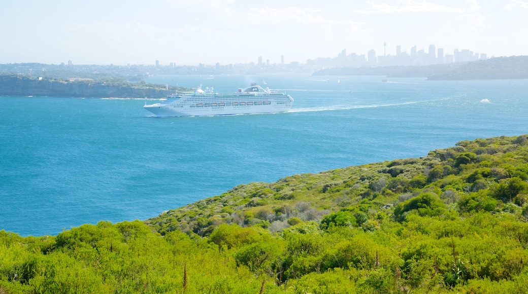 Manly Beach showing a ferry, general coastal views and cruising