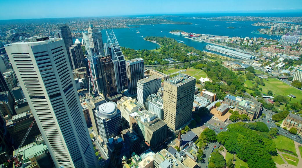 Sydney Tower which includes views, a city and central business district