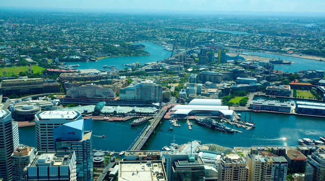 Sydney Tower featuring a bridge, a city and city views