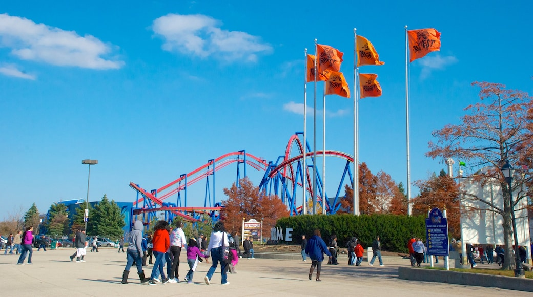 Six Flags Great America which includes rides