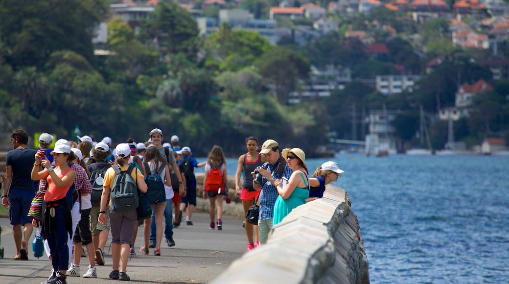 Royal Botanic Gardens featuring a bay or harbour as well as a large group of people