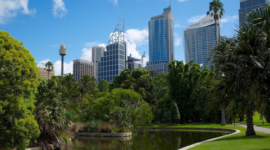 Royal Botanic Gardens showing a high-rise building, a city and a garden