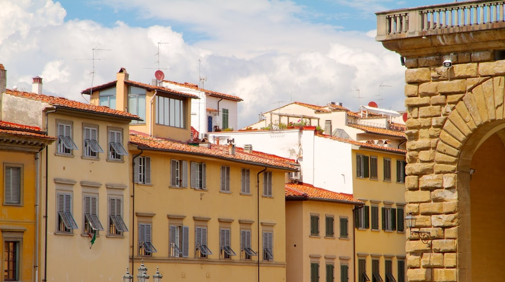 พระราชวัง Pitti แสดง ปราสาท, มรดกทางสถาปัตยกรรม และ เมือง