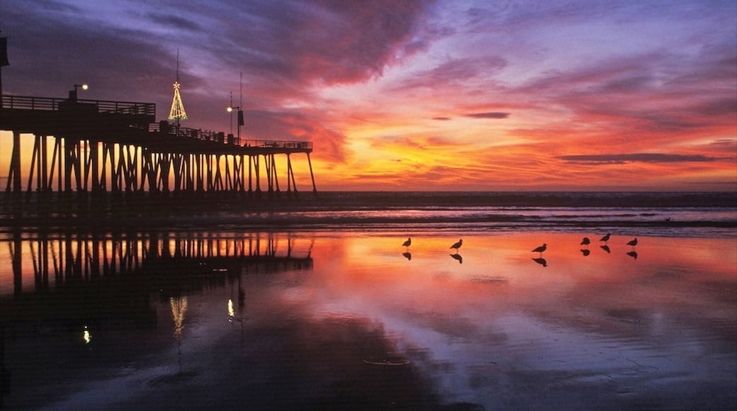 Pismo Beach which includes tropical scenes, a sunset and general coastal views