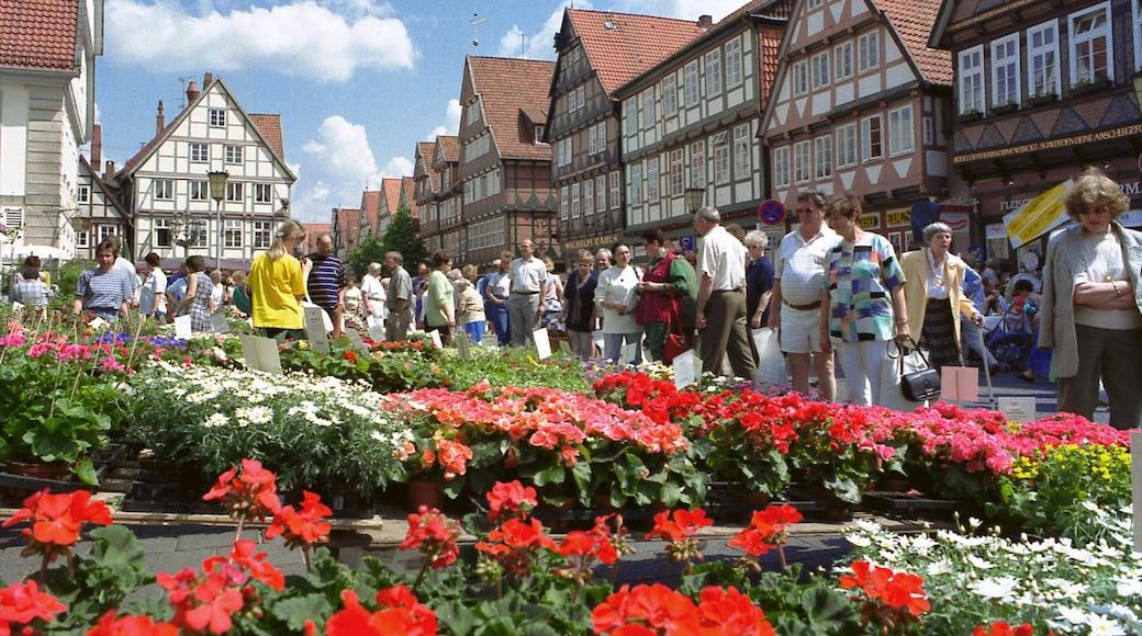 Celle toont een klein stadje of dorpje, bloemen en straten