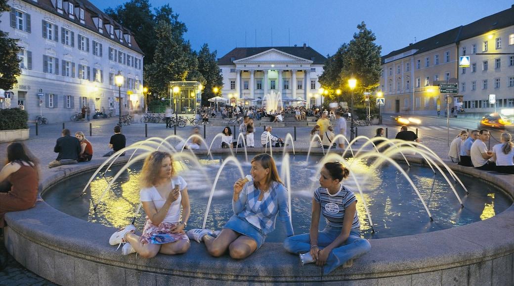Regensburg mostrando architettura d\'epoca, fontana e piazza