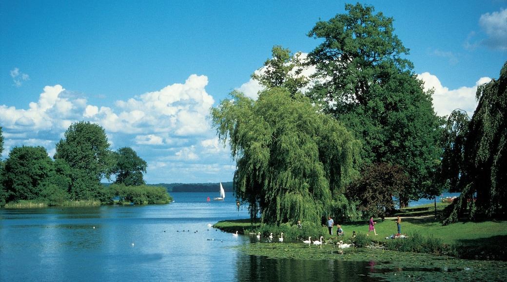 Schwerin featuring puisto, järvi tai vesikuoppa ja maisemat