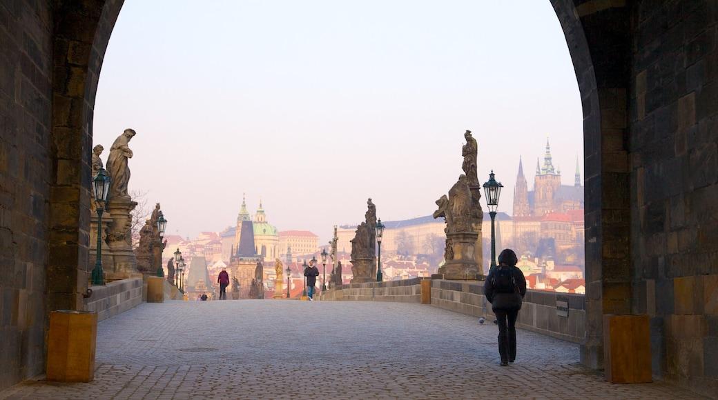 Kasteel van Praag inclusief straten, historische architectuur en een stad