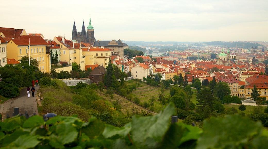 Kasteel van Praag toont een stad, historische architectuur en een kerk of kathedraal