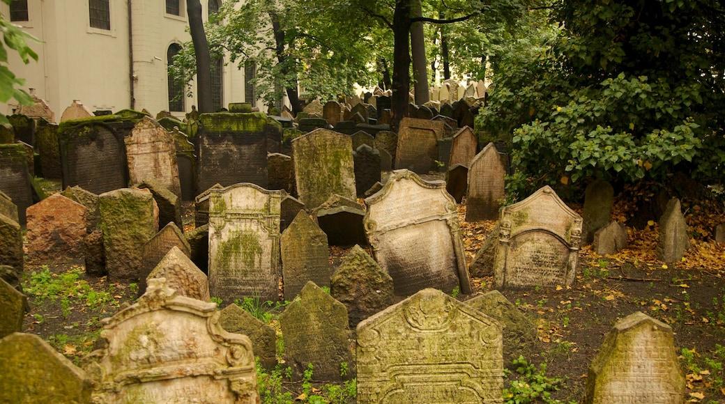 Alter Jüdischer Friedhof das einen Friedhof und religiöse Elemente