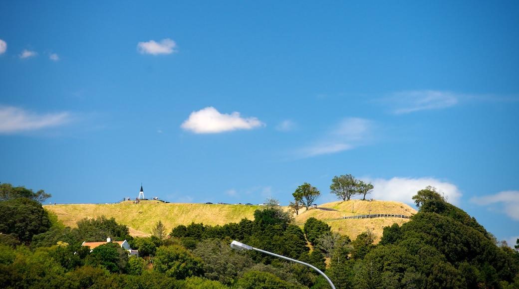 Mt. Eden showing forests