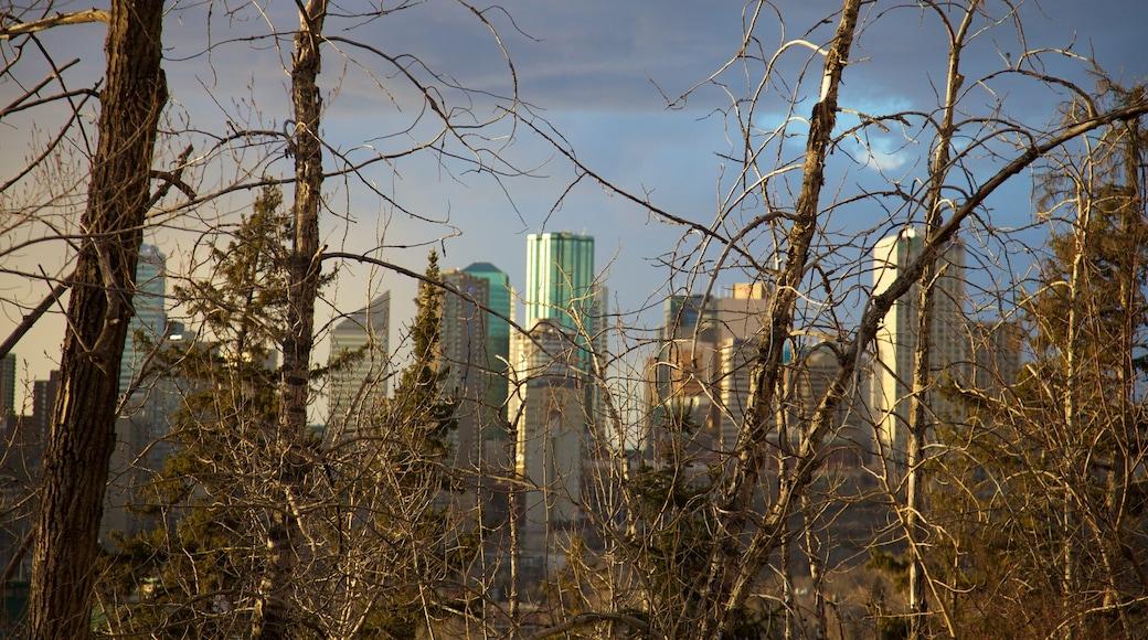 Edmonton mostrando un rascacielos, distrito financiero central y una ciudad