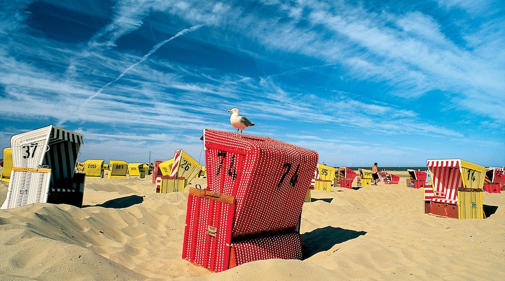 Langeoog welches beinhaltet Strand