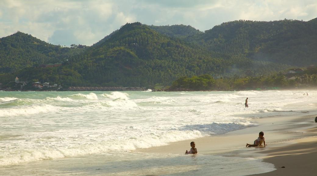 蘇梅島 其中包括 熱帶風景, 山水美景 和 海灘