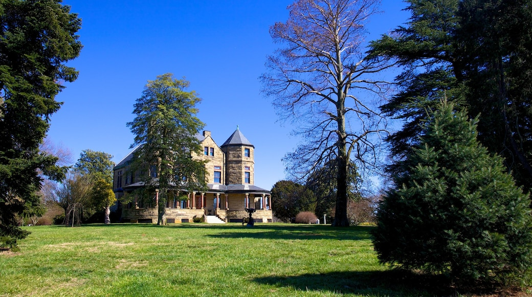 Maymont Park showing a park, a house and heritage architecture