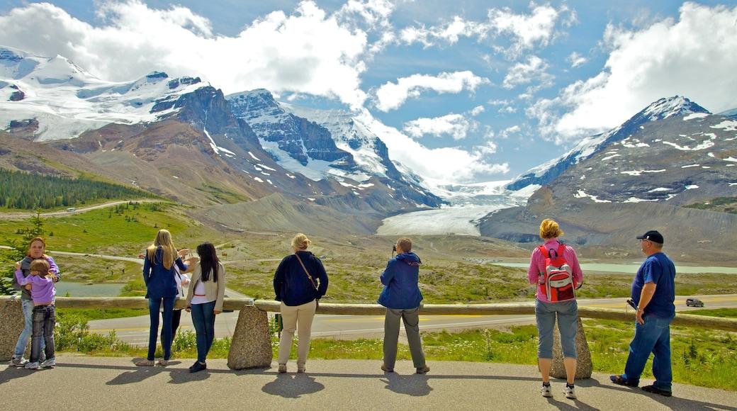 哥倫比亞冰原 其中包括 山水美景, 景觀 和 山