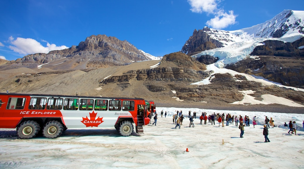 Columbia Icefield featuring mountains, snow and landscape views