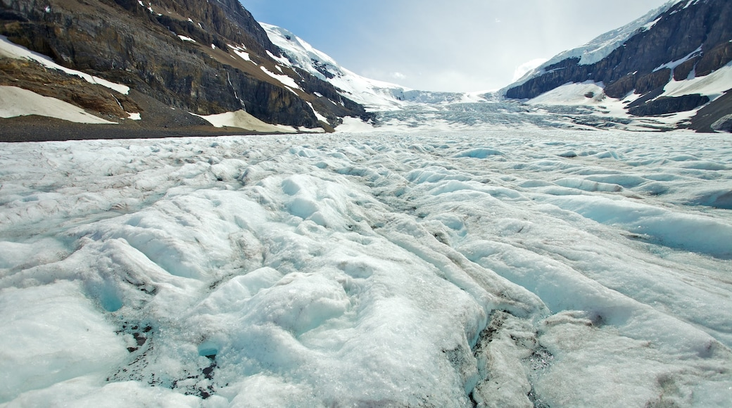 Columbia Icefield which includes landscape views, mountains and snow