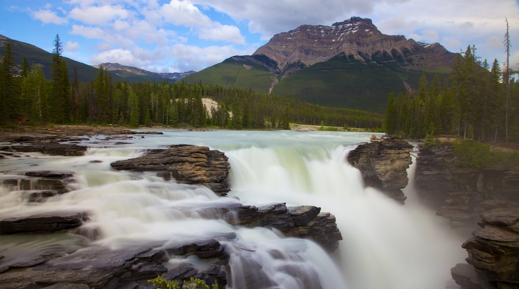 Athabasca Falls showing a waterfall, mountains and landscape views