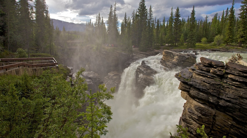 Athabasca Falls which includes mist or fog, a cascade and landscape views