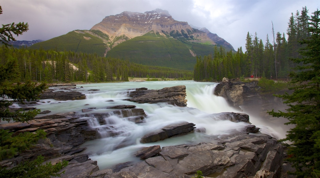 Athabasca Falls featuring a cascade, landscape views and mountains