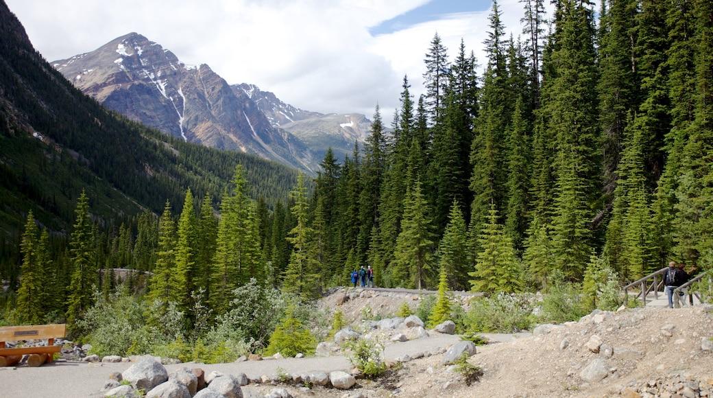 Mount Edith Cavell toont bergen en landschappen