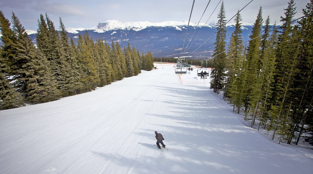 Marmot Basin which includes snow skiing, a gondola and snow