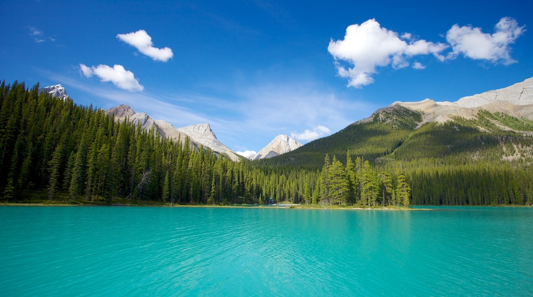 Maligne Lake featuring a lake or waterhole, landscape views and mountains