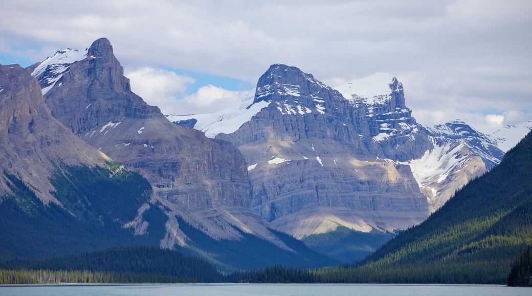 Maligne Lake showing landscape views, a lake or waterhole and mountains