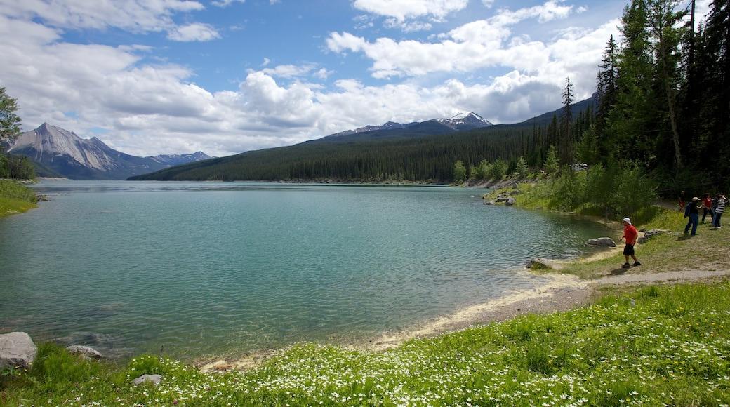 Medicine Lake showing landscape views and a lake or waterhole