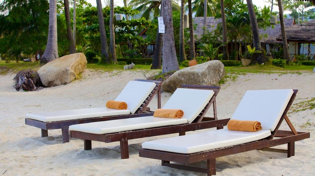 Thong Kut Beach toont tropische uitzichten, een zandstrand en algemene kustgezichten